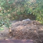 Mulch mountain :(