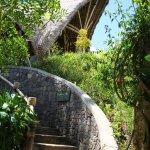 Bamboo Hall