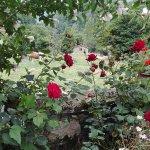 Finca del hotel que llega hasta el Cares, un paraiso con un jardín impecable gracias a Carmen