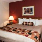 One Bedroom Suite - Single King Bed