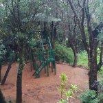 Photo de Neemrana's - Verandah in the Forest