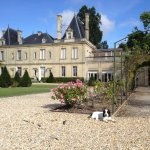 Photo of Le Clos de Meyre - Chateau Meyre