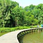 Foto di Hong Kong Wetland Park