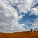Red Sand Dunes Foto