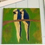 Foto Blue Parrot