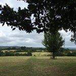 My walk in Farnham Park