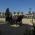 Fundación Real Escuela Andaluza del Arte Ecuestre Foto