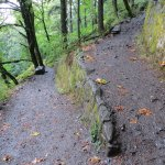 Trail to Upper Horsetail Falls- Columbia River Gorge, OR
