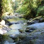 Close hike at Sweet Watter Falls