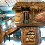 Discovery Tree House