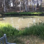 Sweet Springs Nature Reserve - 1/2 mile from the Inn