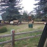 Spruce Lake RV Park Imagem