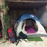 Foto de TuboTulum Hostel