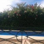 Palau Verd Hotel Foto