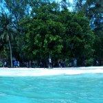 Beach area. White and fine sands