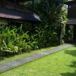 Photo de Ananda Cottages