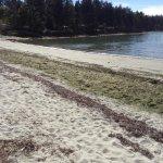 Acess this beach across a grassy field