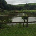 Foto de Gellifawr Woodland Retreat