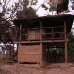 Photo of Boboi Beach Lodge