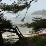 Foto de Pacific Rim National Park