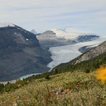 On top of Parker Ridge, view of the Saskatchewan Glacier