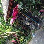 Amazing Tunjung Villa