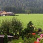 Kulinarik & Genießerhotel Alpin Foto