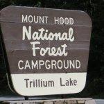 southside, Trllium Lake, Mount Hood National Forest, OR