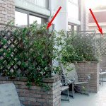 Example of needed repairs: these wooden trellises were falling apart, right by the pool
