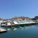 Photo of Marina Cabo San Lucas