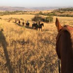 Lydenrust Horse & Hiking Trails