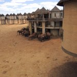 Foto de Sarova Salt Lick Game Lodge