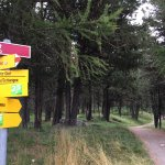 Hiking is easy here, there are yellow signs everywhere telling you where you can go.
