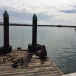 Foto de Dana Point Harbor