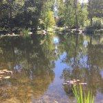 Yampa River Botanic Park Foto
