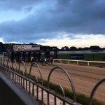 Shelbourne Park Greyhound Stadium Foto