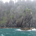 Photo de Kayak Adventures Worldwide - Day Trips