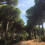 Photo of La Feniglia