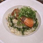 salmon & risotto