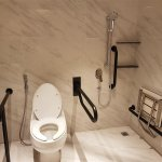 Toilet and adjacent shower