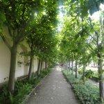 Rosengarten der Neuen Residenz Foto