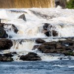 Photo de Hilton Garden Inn Auburn Riverwatch
