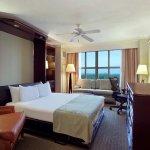 Club Parlor Wall Bed Suite- City View DU