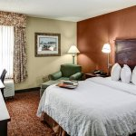 Photo of Hampton Inn Baltimore - Washington International Airport