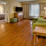 Foto de Hampton Inn & Suites Asheville-I-26