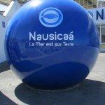 Foto di Nausicaa, National Sea Centre