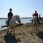 Balade à cheval dans leur domaine