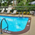 Foto de SpringHill Suites Sarasota Bradenton