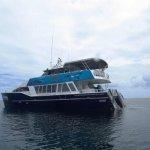 Tasman Venture - Day Tours Foto