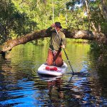 SUP lesson and tour on Lofton Creek in  Fernandina Beach